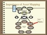 importance of asset mapping