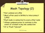 mesh topology 2