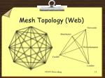 mesh topology web