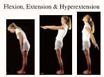 flexion extension hyperextension22