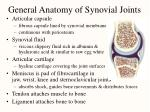 general anatomy of synovial joints
