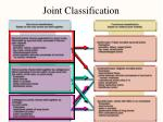 joint classification