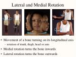 lateral and medial rotation