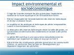 impact environnemental et socio conomique