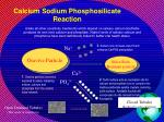 calcium sodium phosphosilicate reaction