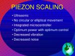 piezon scaling