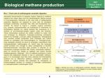 biological methane production6