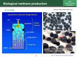 biological methane production7