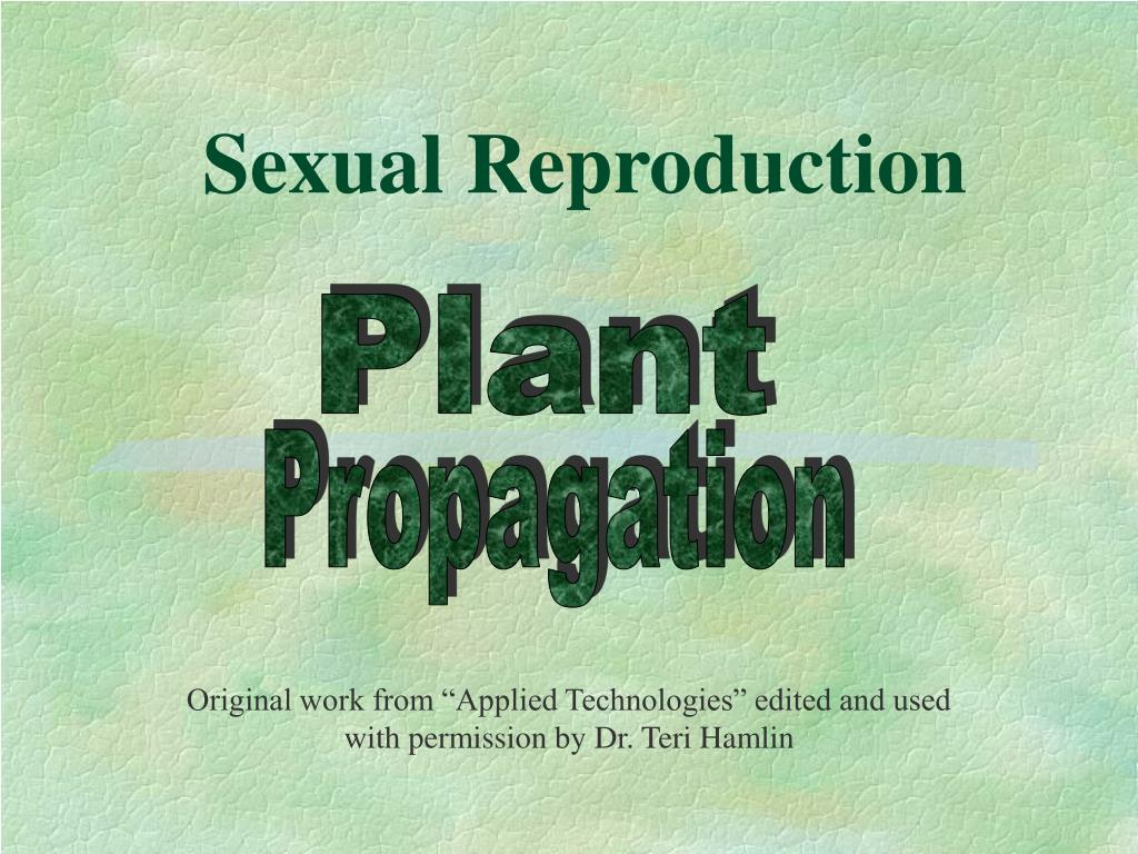 sexual reproduction l.