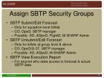 assign sbtp security groups