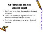 all tomatoes are not created equal