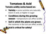tomatoes acid