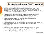 surexpression de cox 2 central