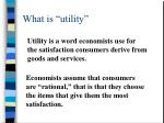 what is utility