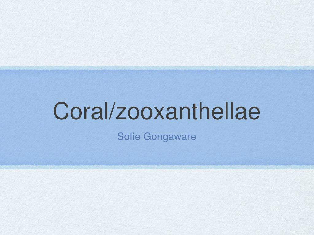coral zooxanthellae l.