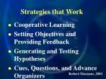 strategies that work100