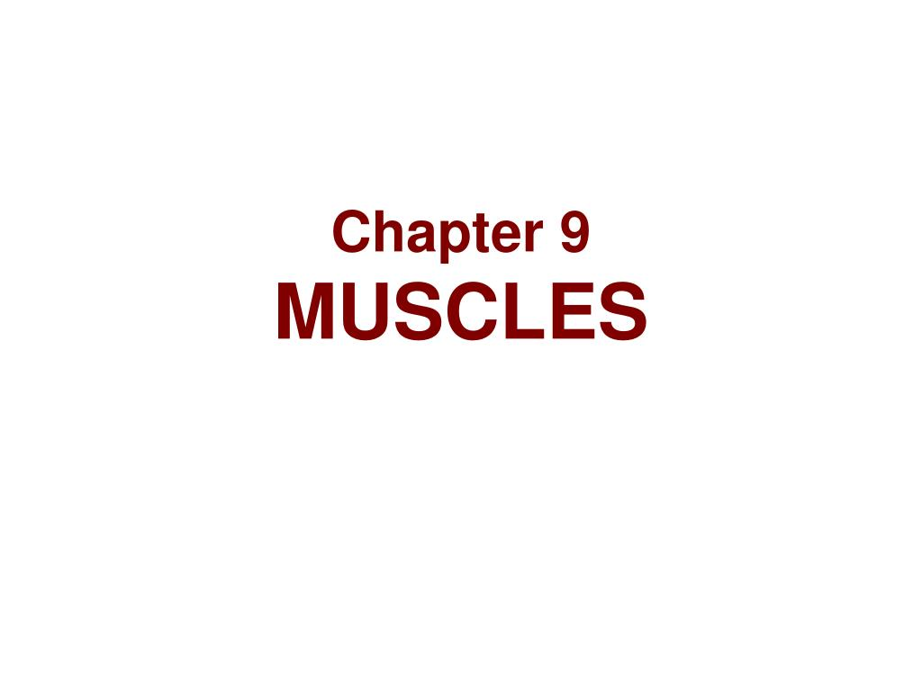 chapter 9 muscles l.
