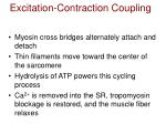 excitation contraction coupling26