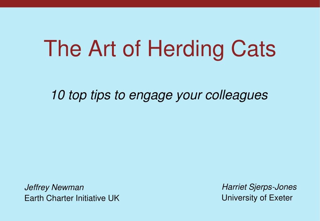 the art of herding cats l.