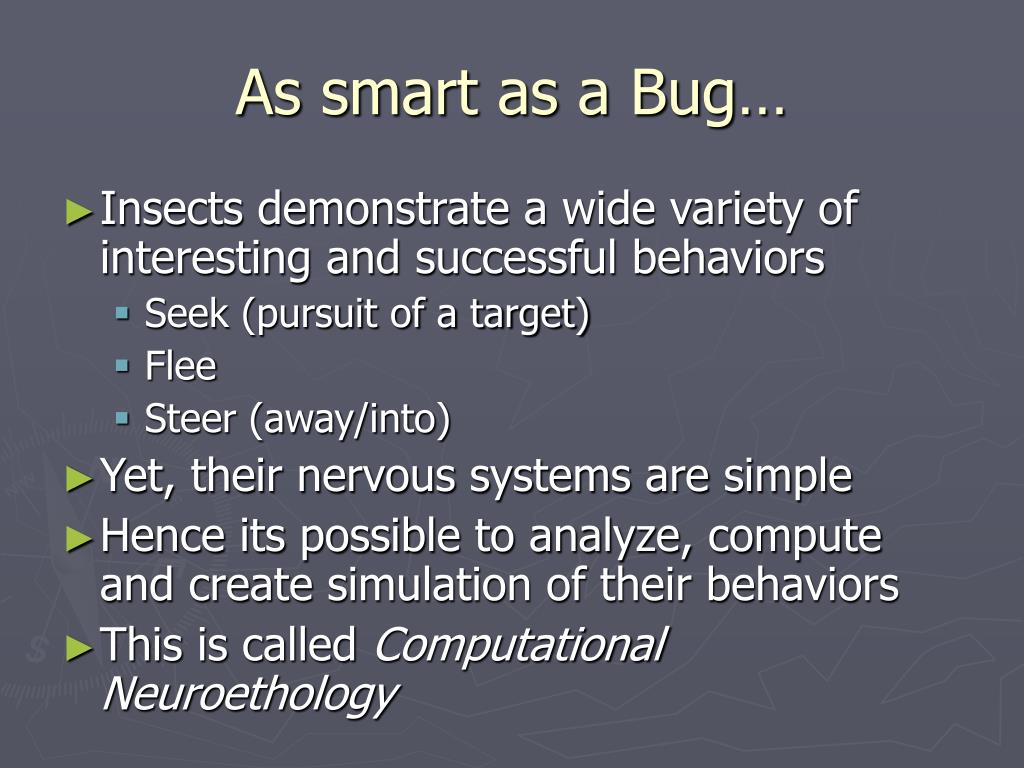 As smart as a Bug…