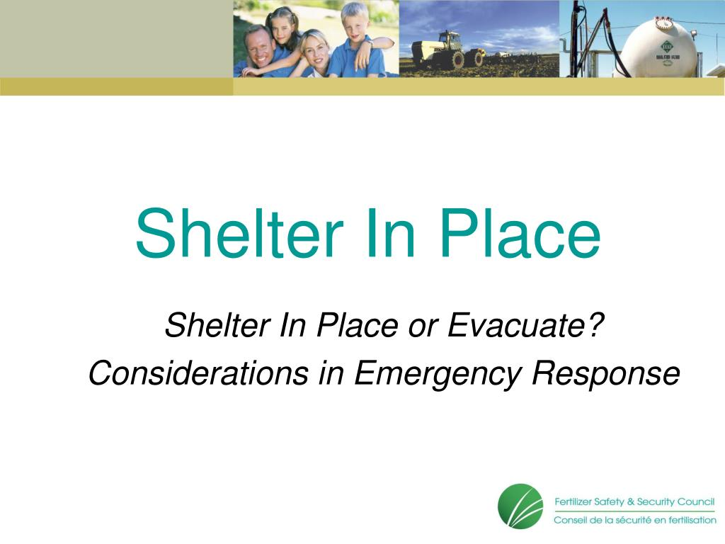 shelter in place l.