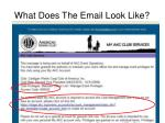 what does the email look like