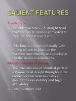salient features6