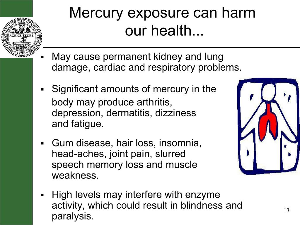 Mercury exposure can harm