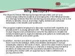 why mentors