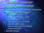 bases for consumer market segmentation