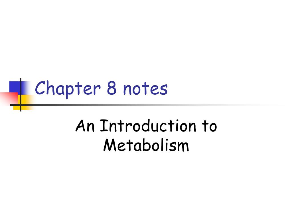 chapter 8 notes l.