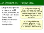 job descriptions project ideas