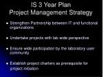is 3 year plan project management strategy