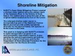 shoreline mitigation