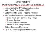 mch title v performance measures system