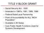 title v block grant