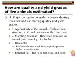 how are quality and yield grades of live animals estimated31