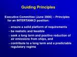 guiding principles10