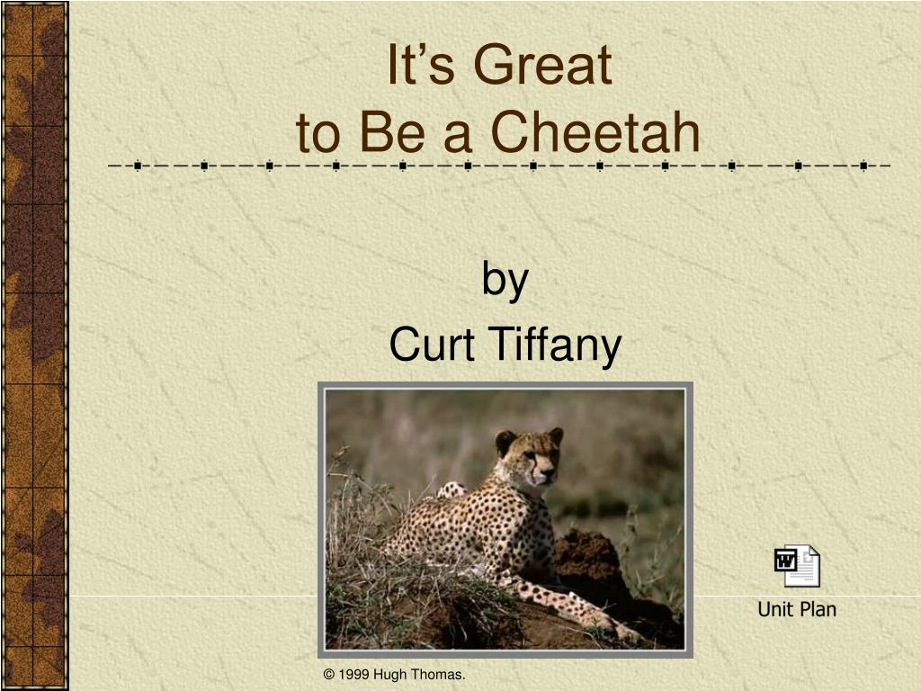 it s great to be a cheetah l.