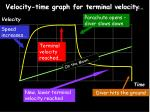velocity time graph for terminal velocity