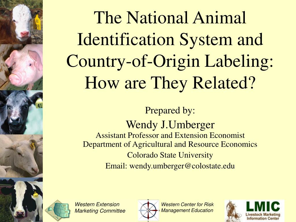 the national animal identification system and country of origin labeling how are they related l.