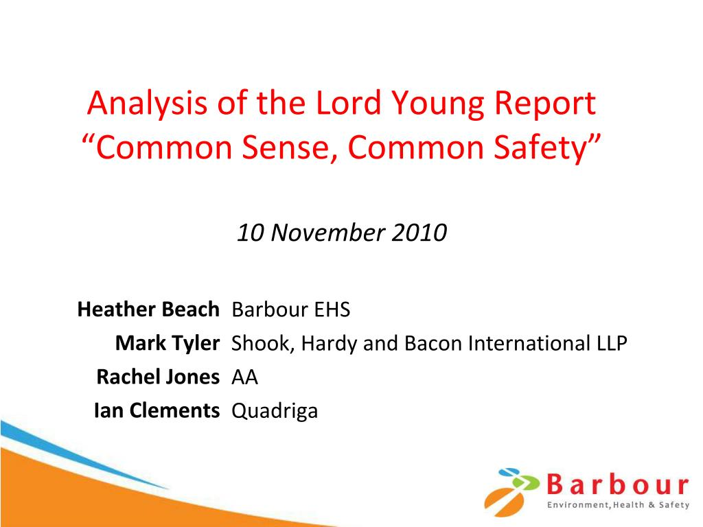 analysis of the lord young report common sense common safety 10 november 2010 l.