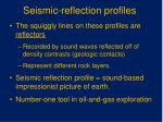 seismic reflection profiles