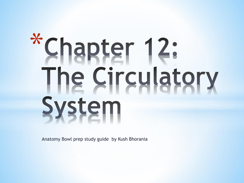 chapter 12 the circulatory system l.