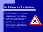 iv options and conclusions