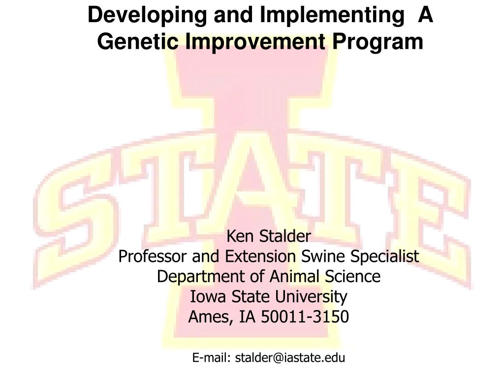 developing and implementing a genetic improvement program l.