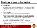 rotational crossbreeding system