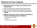 selection for sow longevity