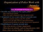 organization of police work with juveniles