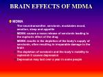 brain effects of mdma
